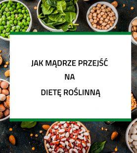 Jak mądrze przejść na dietę roślinną – baza wiedzy w pigułce zamiast konsultacji