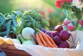 Choroba Hashimoto i niedoczynność tarczycy a dieta